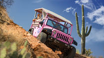 Sonoran Desert Tour from Scottsdale, Phoenix, 4WD, ATV & Off-Road Tours