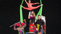 Hamners' Unbelievable Variety Show, Branson, Theater, Shows & Musicals