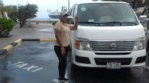 Curacao Transfer to or from Airport, Curacao, Airport & Ground Transfers