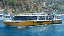 45-Minute Catalina Island Glass-Bottom Boat Tour from Avalon, Catalina Island, Glass Bottom Boat ...