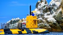 45-Minute Semi-Submarine Tour of Catalina Island From Avalon, Catalina Island, Submarine Tours