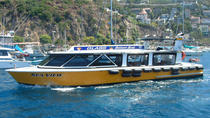 Glass Bottom Boat Tour, Catalina Island, Glass Bottom Boat Tours