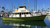 Ultimative Waikiki-Angeltour, Oahu, Fishing Charters & Tours