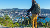 Full-Day Wellington Self-Guided Electric Bike Tour, Wellington
