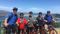 Guided Wellington Sightseeing Tour by Electric Bike, Wellington, Half-day Tours