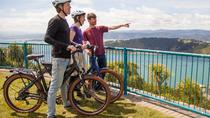 Wellington Electric Bike Tour, Wellington, Bike & Mountain Bike Tours