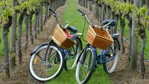 Mattituck New York Guided Farm and Vineyard Bike Tour, Long Island, Bike & Mountain Bike Tours