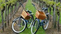 Mattituck New York Guided Farm and Wine Country Bike Tour, Long Island, Bike & Mountain Bike Tours