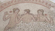 Private guide to Ruins of Gnatia (Puglia) and archaeological Museum, superbly laid out and...