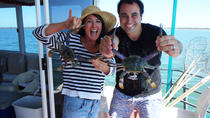 Mandurah Luxury Estuary Crabbing Tour, Mandurah, Day Cruises