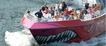 Boston Codzilla: Trepidante paseo en barco, Boston, Jet Boats & Speed Boats