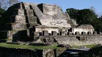 Altun Ha Maya Ruins from San Ignacio, San Ignacio, Archaeology Tours
