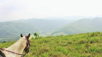 Horseback Riding to Flowers Camp Cave and Canoe Tour, San Ignacio, Horseback Riding