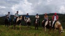 Sunset Horseback Ride, San Ignacio, Horseback Riding