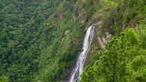 Thousand Foot Falls and Rio On Pool Tour from San Ignacio, San Ignacio, Nature & Wildlife