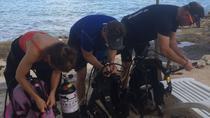 Open Water Certification Course in Cozumel, Cozumel, Scuba Diving