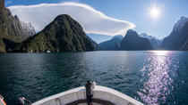 Full-Day Milford Sound and Fiordland National Park Tour including Milford Sound Cruise and BBQ ...