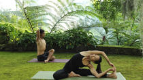 Yoga Class in Agra, Agra, Yoga Classes