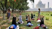 Yoga Class With In The Shadow Of Tajmahal, Agra, Yoga Classes