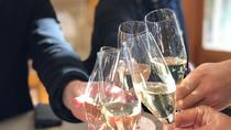 Wine trail and Christchurch City day tour, Christchurch, Day Trips