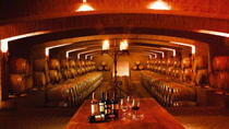 Half-Day Small Group Undurraga Vineyard Tour, Santiago, Wine Tasting & Winery Tours
