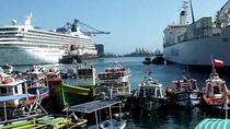 PRIVATE TOUR: Pre-Post Cruise Viña del Mar Valparaiso and Casablanca Winery tour, Valparaíso,...