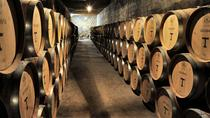 Private Tour: Santa Rita Vineyard with Wine Tastings, Santiago, Wine Tasting & Winery Tours