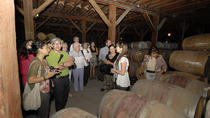 Semi-Private Premium Wine Tour at Santa Rita Winery, Santiago, Wine Tasting & Winery Tours