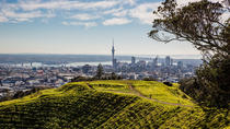 Cultural Walking Tour on Mount Eden, Auckland, Private Sightseeing Tours