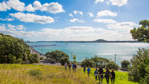Maori Guided Walking Tour in Auckland, Auckland, Walking Tours