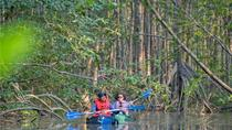 Mangrove Kayak Exploration Tour from Puerto Jimenez, Puntarenas, Kayaking & Canoeing
