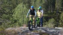 Fatbike Day Trip in Rovaniemi, Rovaniemi, Ski & Snow
