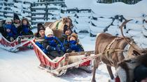 Lapland Along the Reindeer Path: 1-Hour Reindeer Safari from Rovaniemi, Rovaniemi, Ski & Snow