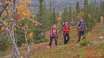 Rovaniemi Nature Tour in Autumn, Rovaniemi, Ski & Snow