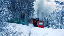 Biglietto per il treno End of the World, Ushuaia, Attraction Tickets