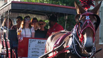 French Quarter Horse and Carriage Ride with Optional Cemetery Tour, New Orleans, Bus & Minivan Tours