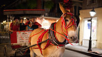 New Orleans Small-Group Haunted History Carriage Tour, New Orleans, Horse Carriage Rides