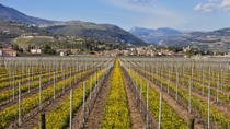 Valpolicella Day Trip from Venice: Wine Tasting and Verona, Venice, null