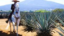 Guadalajara, Tequila and Tlaquepaque Overnight Tour from Puerto Vallarta, Puerto Vallarta, Cultural...
