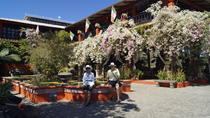 Vallarta Botanical Garden and Tequila Tasting from Puerto Vallarta, Puerto Vallarta, Half-day Tours