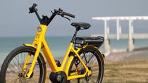 Guided Electric Bike Tour of Napier, Napier, Bike & Mountain Bike Tours