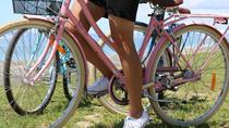 Local Guided Biking Tour of Napier, Napier
