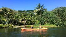 Guided Kayak Adventure on the Wailua River, Kauai, Kayaking & Canoeing