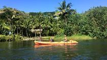 Wailua River Kayak & Hawaiian Village Tour, Kauai, Kayaking & Canoeing
