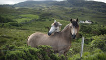 2-Day Connemara and Galway Bay Tour from Dublin by Train, Dublin, Overnight Tours