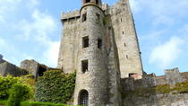 Excursion en train pour Cork et Blarney Castle, au départ de Dublin, Dublin, Circuits en train