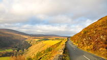 Wicklow Mountains, Avoca und Glendalough Rail Tour ab Dublin Port, Dublin, Ports of Call Tours
