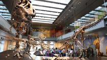 Admission: Natural History Museum of Los Angeles County, Los Angeles, City Tours