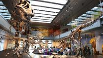 Natural History Museum of Los Angeles County Museum Admission, Los Angeles, Bus & Minivan Tours
