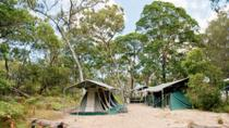 2-Day Moreton Island 4WD Camping Tour from Brisbane, Brisbane